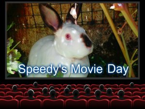 Speedys Movie Day